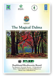 The Magical Dalma